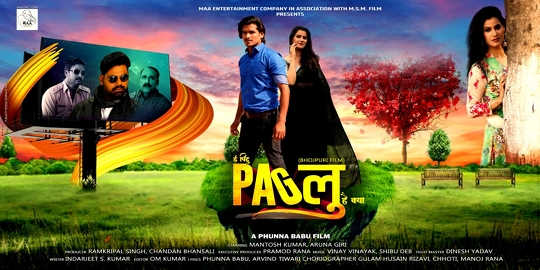 The film Paglu Will Be Released Alongside Tiger Shroff's Film Baaghi 3